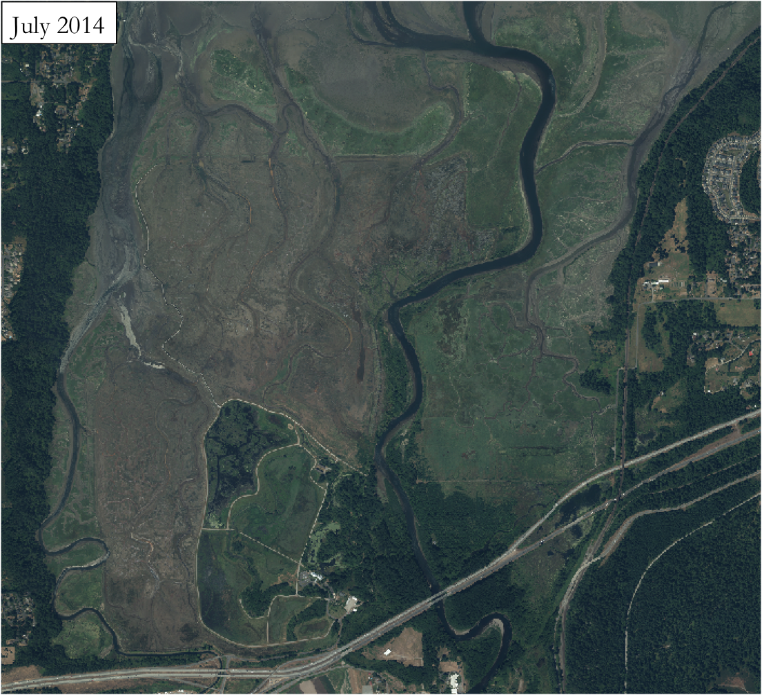 Aerial Photography and Remote Sensing – Nisqually Delta